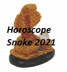 Horoscope Snake 2021