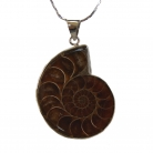 Ammonite Gemstone Pendant