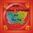 Chinese Horoscope Boar Kit 2015