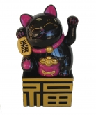 Black Money Cat on Fu