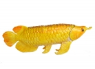 Bejeweled Golden Arowana Fish